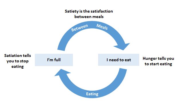 satiety is the satisfaction between meals, satiation tells you to stop eating